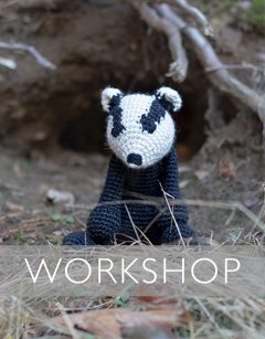 Learn to complex colour change: Susan the Badger Saturday 22nd August (AM)