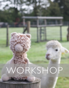 Learn to Crochet: Quinn the Huacaya Alpaca Saturday 1st February (AM)