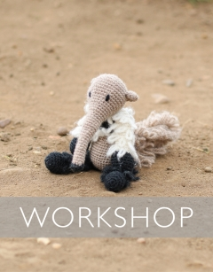 Learn to crochet: Sid the Giant Anteater Sunday 20th September (AM)