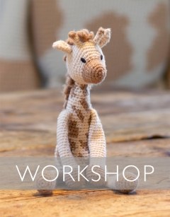 Learn to Complex Colour Change: Caitlin the Giraffe Saturday 25th January (PM)