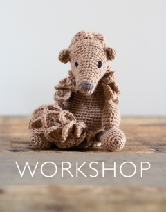 Learn to crochet: Jane the Pangolin Saturday 12th September (AM)