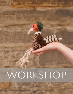 Learn to crochet Gilbert the Pheasant Saturday 6th June (AM)