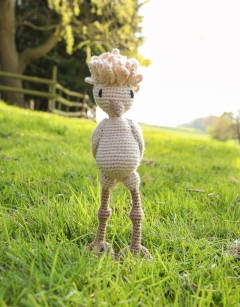 Learn to Crochet: Ruth the Polish Hen Wednesday 14th August (PM)