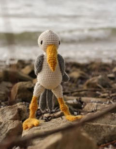 Learn to Crochet: Dave the Seagull Wednesday 14th August (PM)