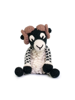 Dominic the Swaledale Sheep