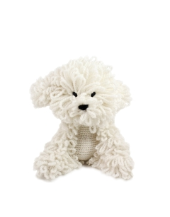Myra the Bichon Frise