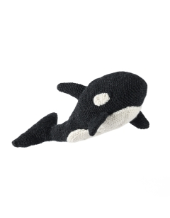 Florence the Orca