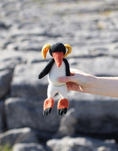 Petra the Rockhopper Penguin