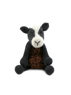 Noah the Zwartbles Sheep