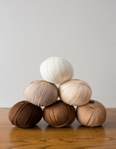 Wool Week Sheep Bundle